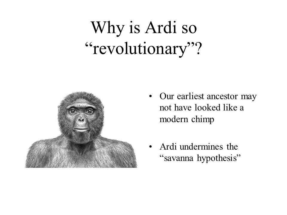 Biological Anthropology - ppt video online download