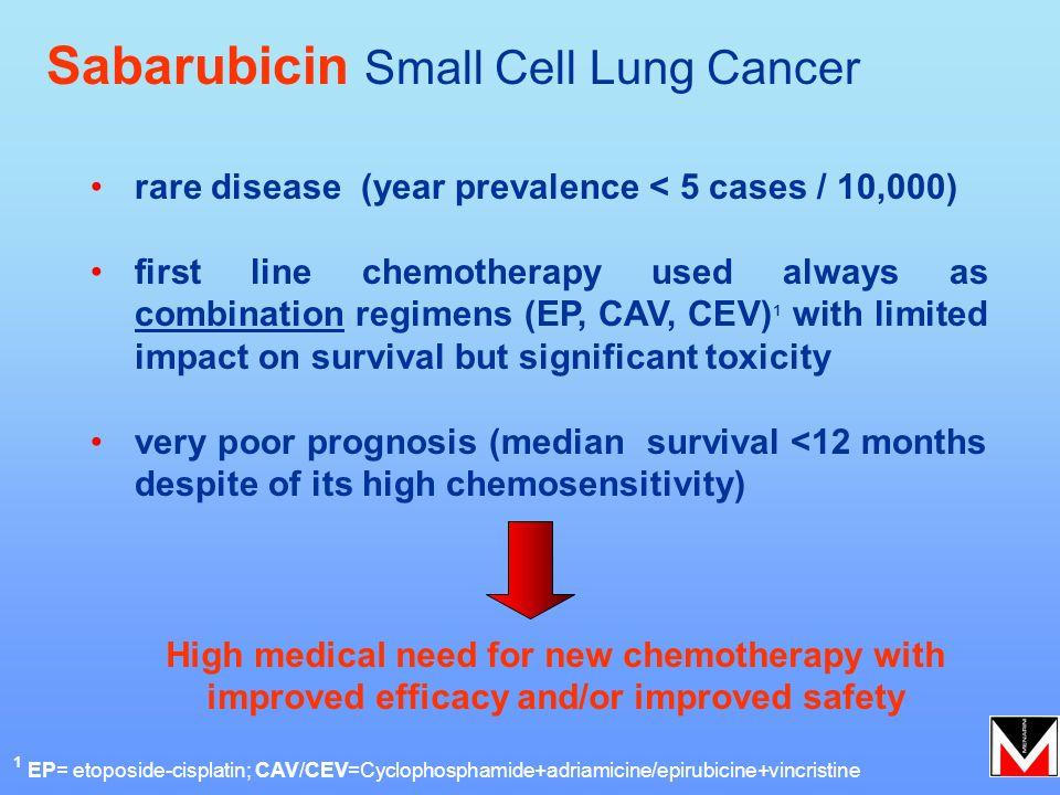 Sabarubicin Small Cell Lung Cancer