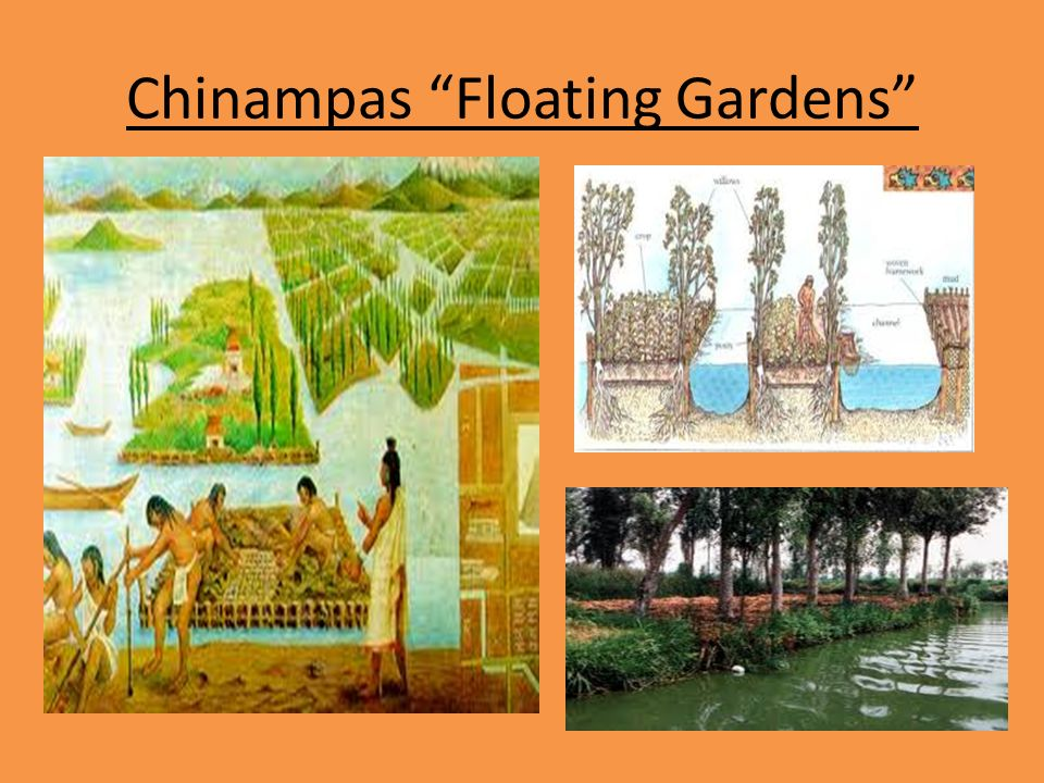 Aztecs Floating Gardens Garden Ftempo