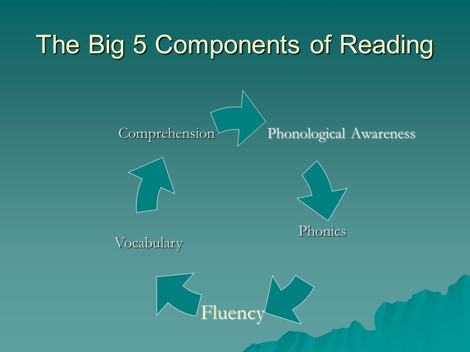 Six Components of an Effective Literacy Program