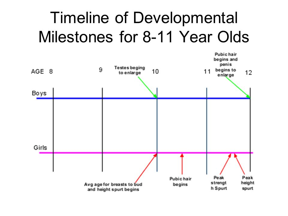 developmental timeline You may be referred by your child's primary care physician to the developmental pediatrics program at children's minnesota to address concerns about your child's developmental, behavioral, social or learning challenges.