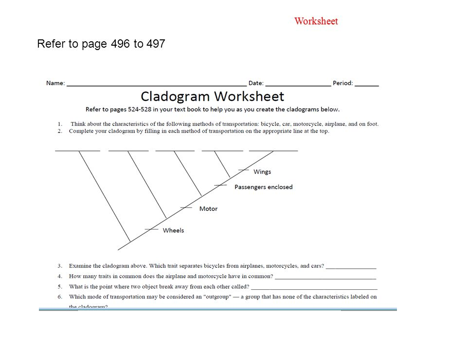 100 cladogram practice worksheet worksheets index amy brown science free monohybrid. Black Bedroom Furniture Sets. Home Design Ideas