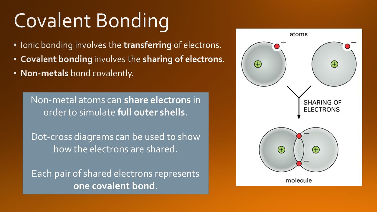 covalent bond essay