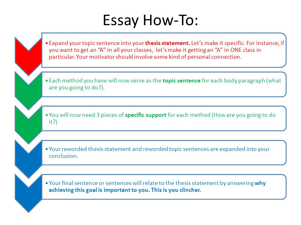 Why is it so important that an essay have a thesis statement