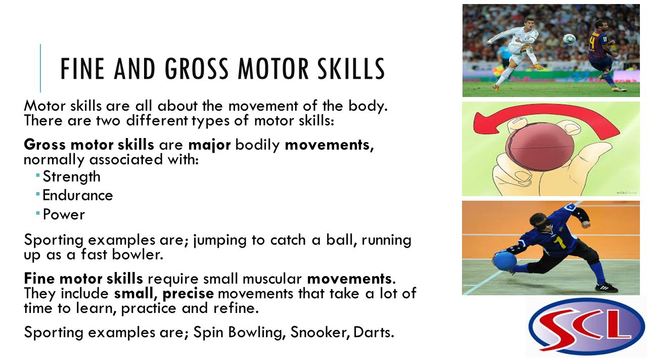 Unit 27 technical tactical skills in sport ppt video for Fine and gross motor skills activities