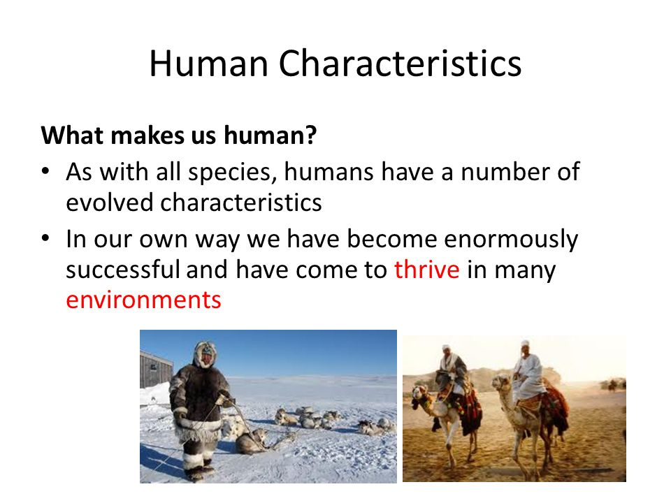 the characteristics that make us human This section of our website focuses on several human characteristics that evolved over the past 6 million about us acknowledgments events human origins program.
