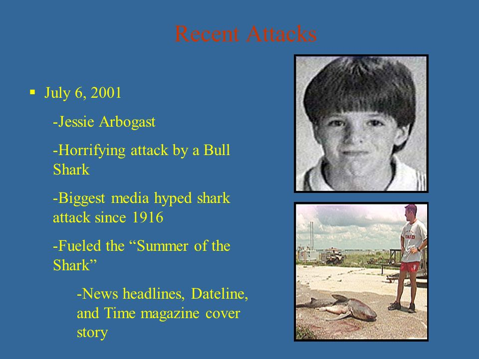 The media hype on shark attacks