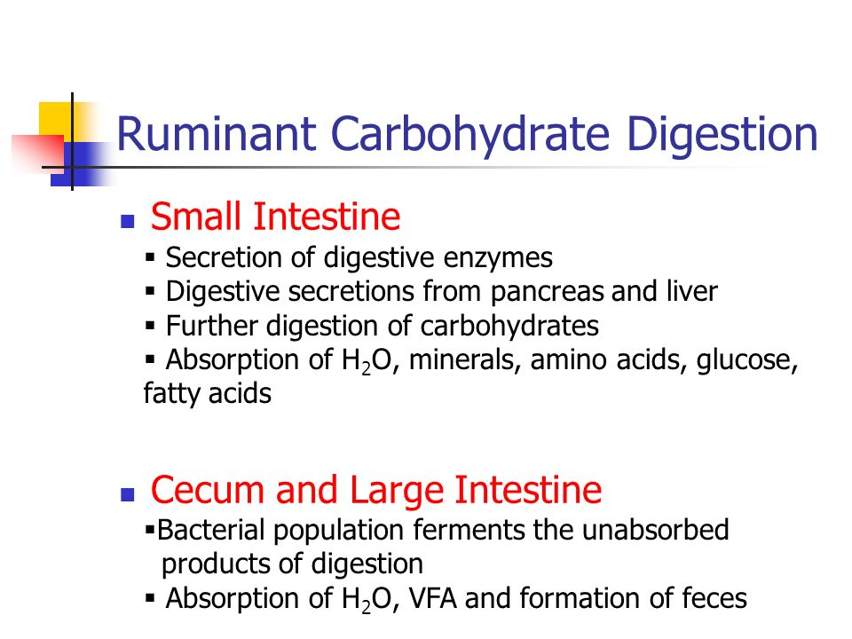 Carbohydrate Digestion - ppt download
