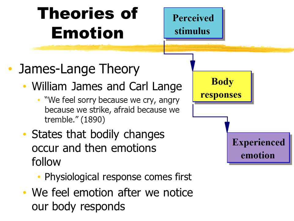 james lange theory Theories of emotion in daily life print reference this as cited in strongman, 2006), the most important part from james-lange theory was the view of the.