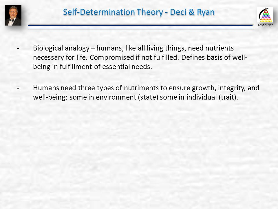 Self assessment and positive psychology organizational behavior 52 self determination solutioingenieria Image collections