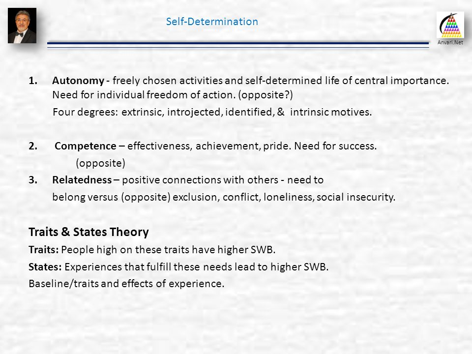 Self assessment and positive psychology organizational behavior traits states theory self determination solutioingenieria Image collections