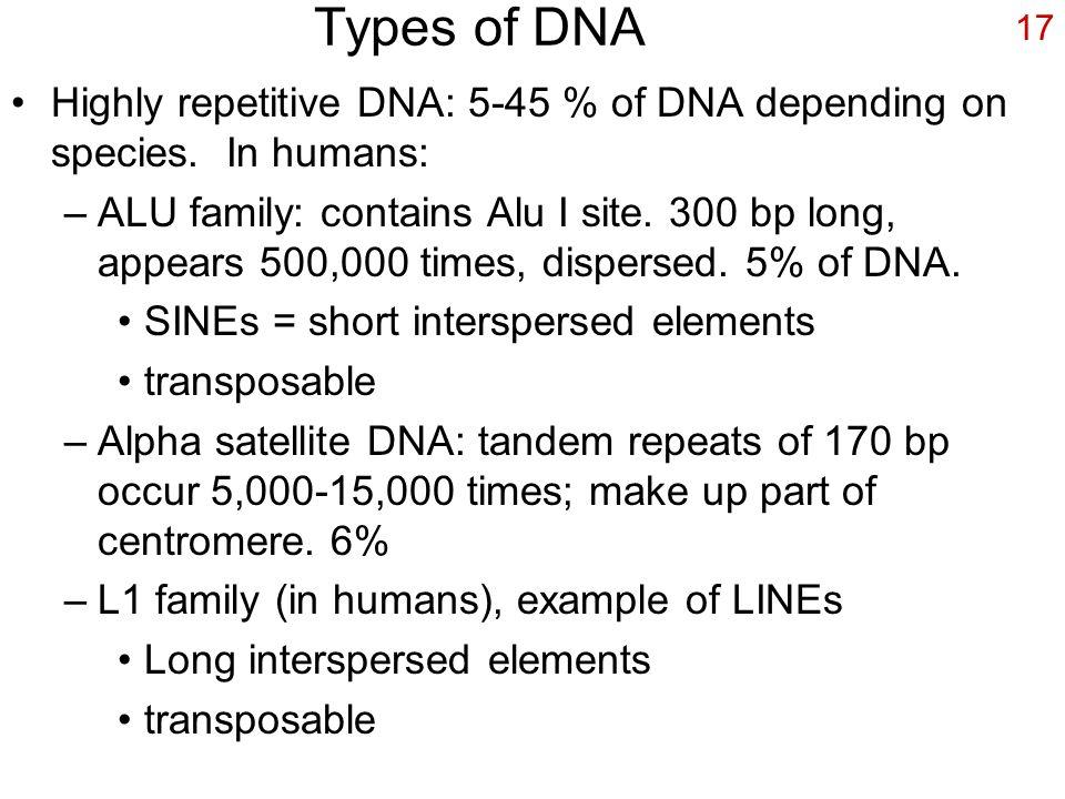 difference between euchromatin and heterochromatin pdf
