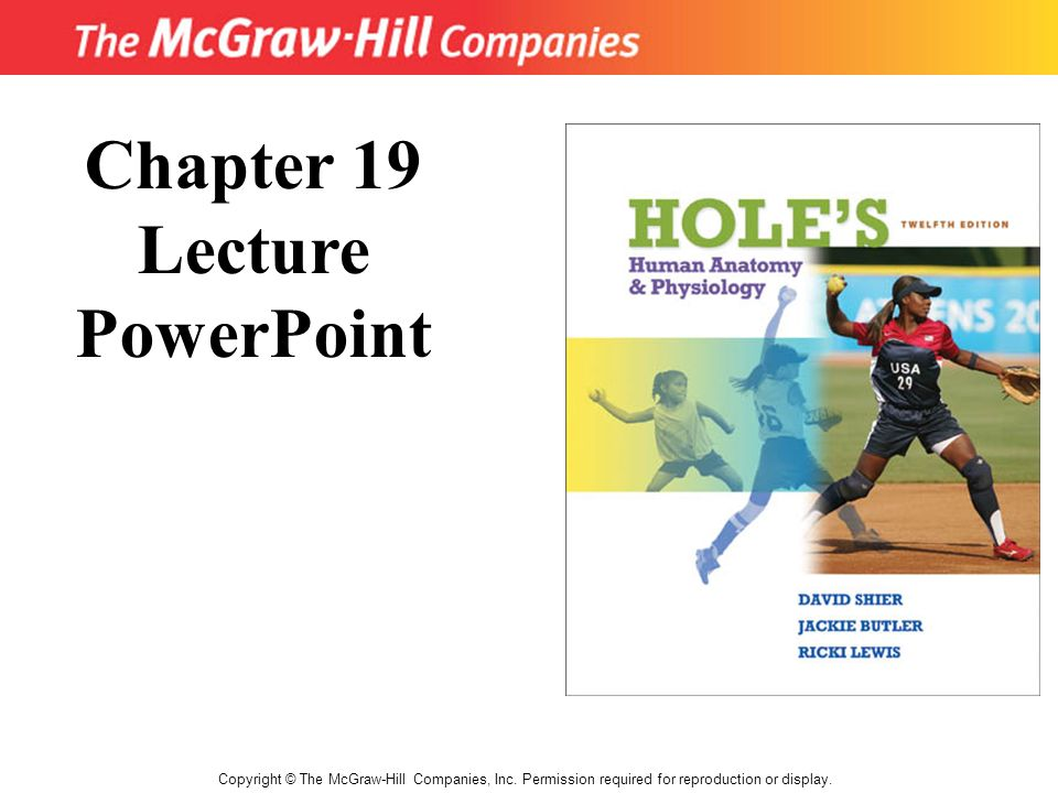 Chapter 19 Lecture PowerPoint - ppt download