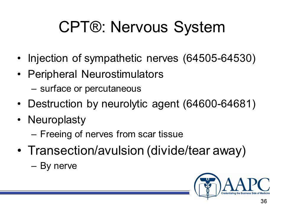 Endocrine And Nervous System Ppt Download