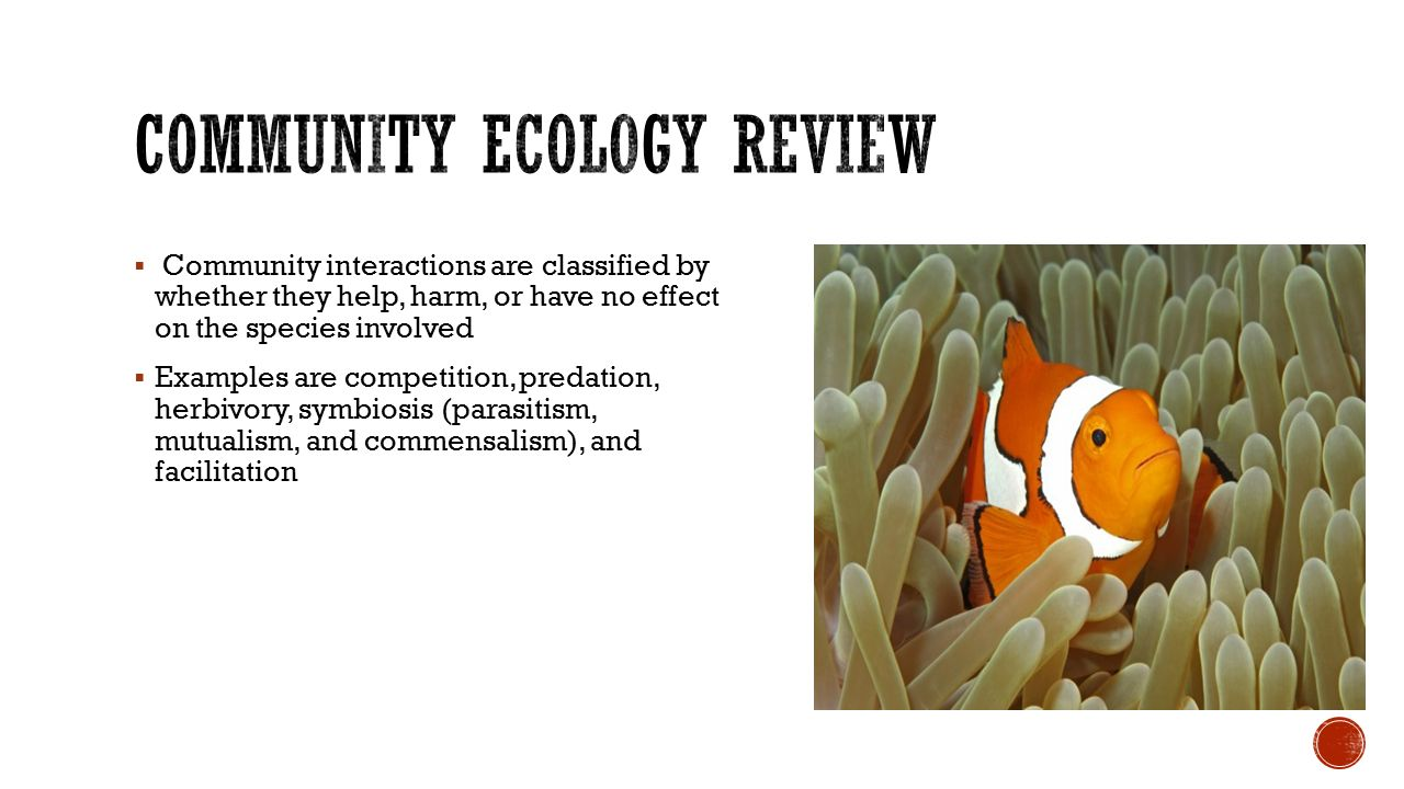worksheet Community Interactions Worksheet which species benefits from its interactions ppt video online community ecology review