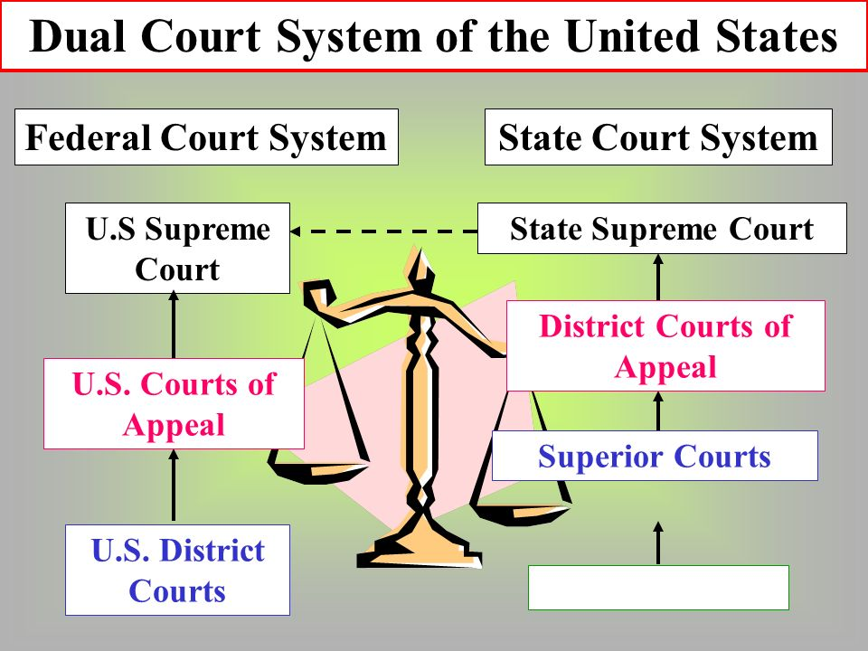 State Courts vs. Federal Courts