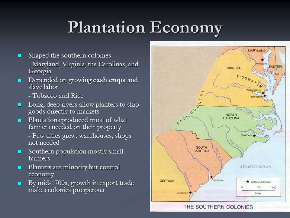 Plantation Economy Shaped the southern colonies