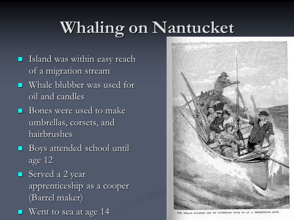 Whaling on Nantucket Island was within easy reach of a migration stream. Whale blubber was used for oil and candles.