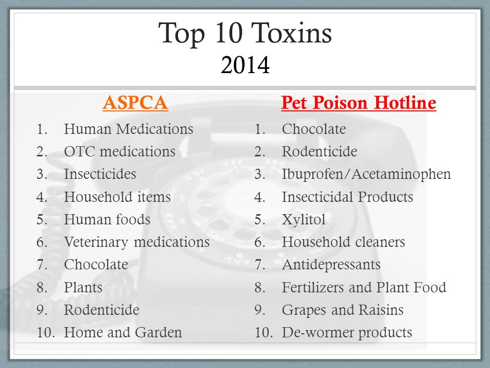 Top 10 Toxins 2014 ASPCA Pet Poison Hotline Human Medications