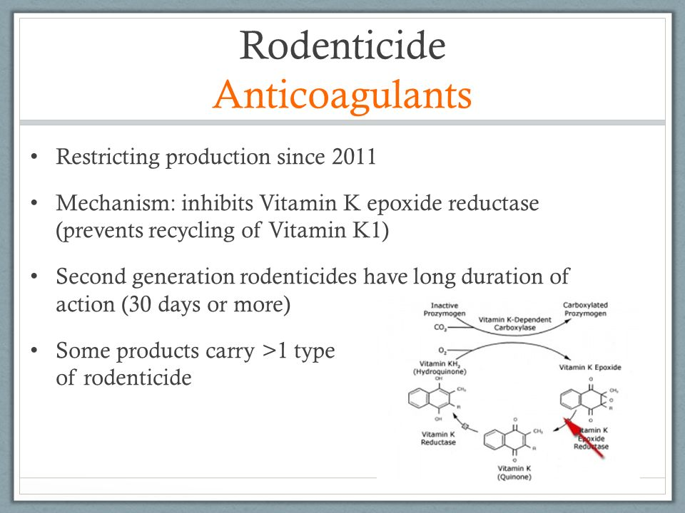 Rodenticide Anticoagulants