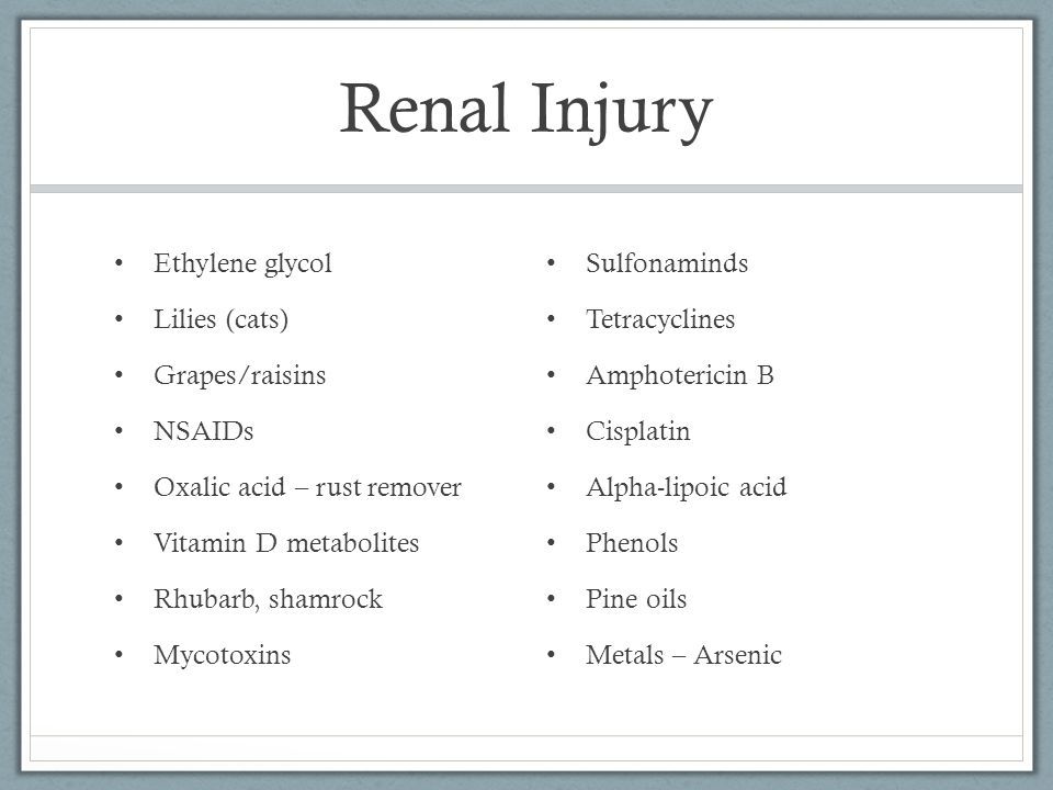 Renal Injury Ethylene glycol Lilies (cats) Grapes/raisins NSAIDs