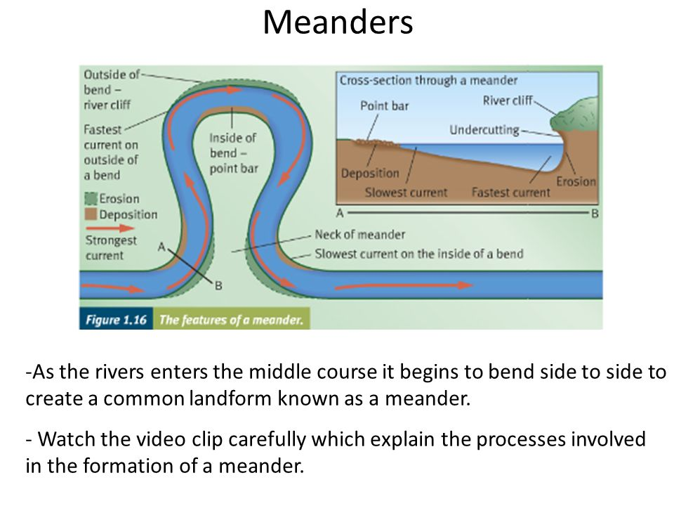 Case study: The River Tees - ppt video online download