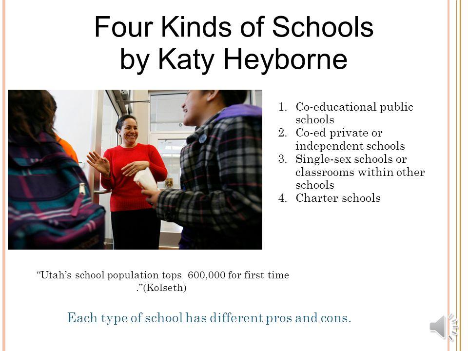 charter schools vs public schools pros and cons