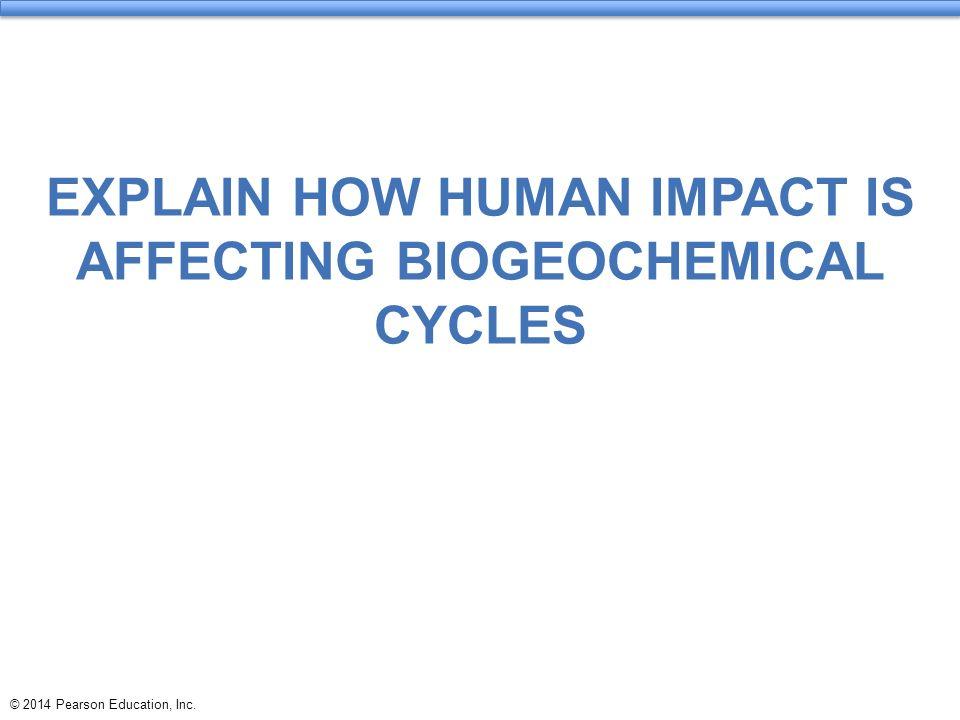 human impact on biogeochemical cycles For more classes visit wwwsci256outletcom sci 256 week 2 human impact on biogeochemical cycles worksheet complete the material: human impact on biogeochemical cycles worksheet.