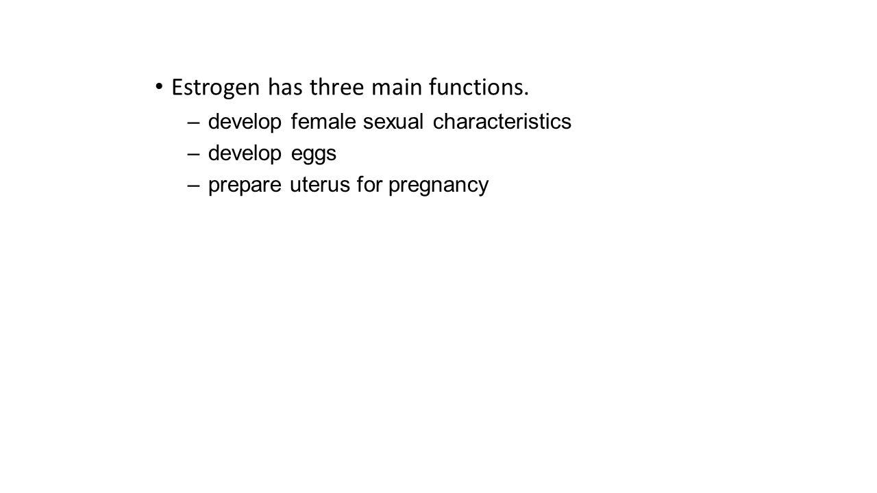 Estrogen has three main functions.