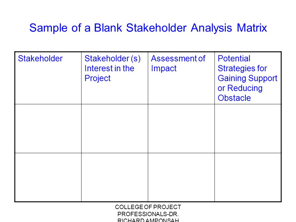 Stakeholders Identification Analysis And Management  Ppt Download