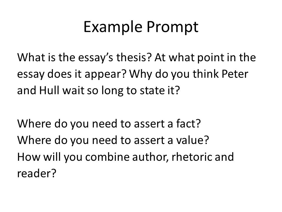 writing the claim ppt  example prompt