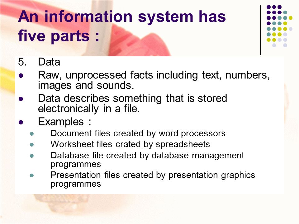 five parts of an information system Why are information systems important a human rights information system is much more than just a database simply put, it is a set of processes, tools and standards that allow human rights organisations to manage information strategically, work efficiently and safely, and communicate effectively about human right problems.