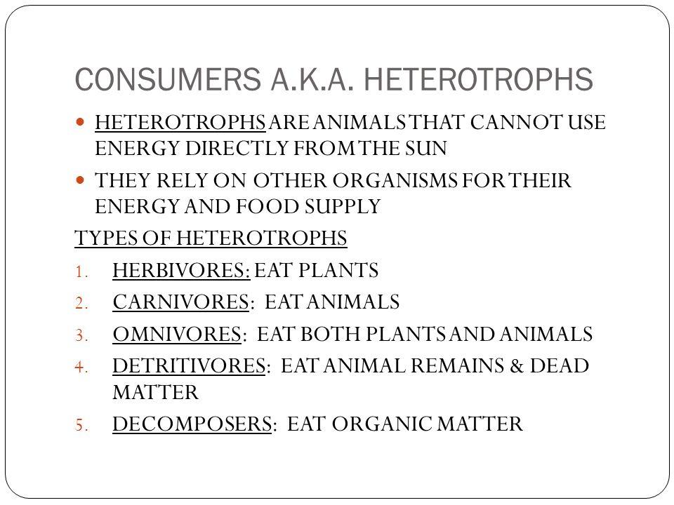 CONSUMERS A.K.A. HETEROTROPHS
