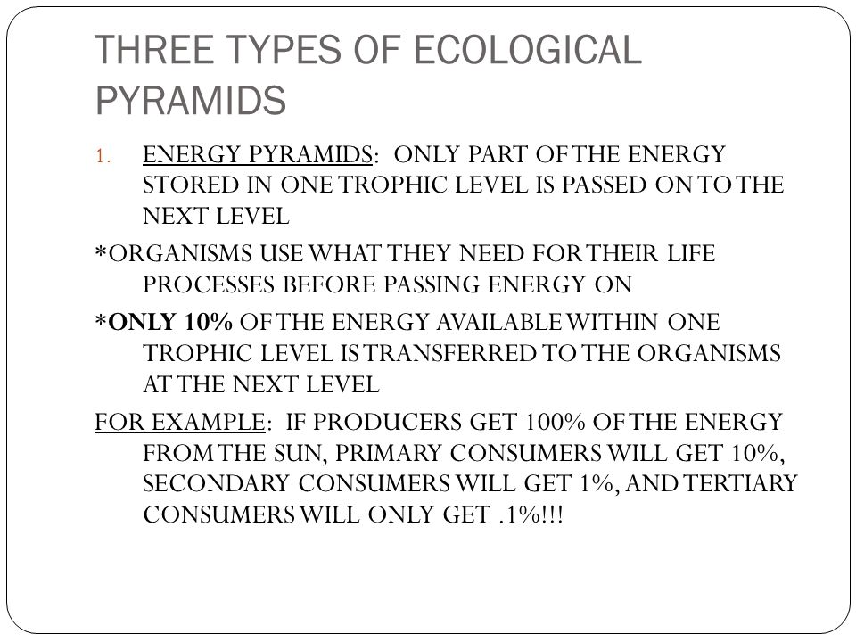THREE TYPES OF ECOLOGICAL PYRAMIDS