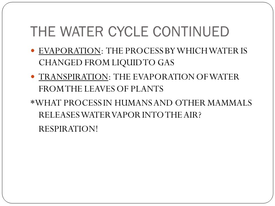 THE WATER CYCLE CONTINUED