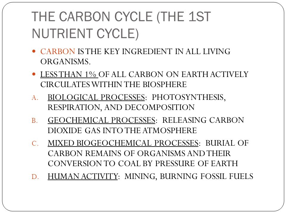THE CARBON CYCLE (THE 1ST NUTRIENT CYCLE)