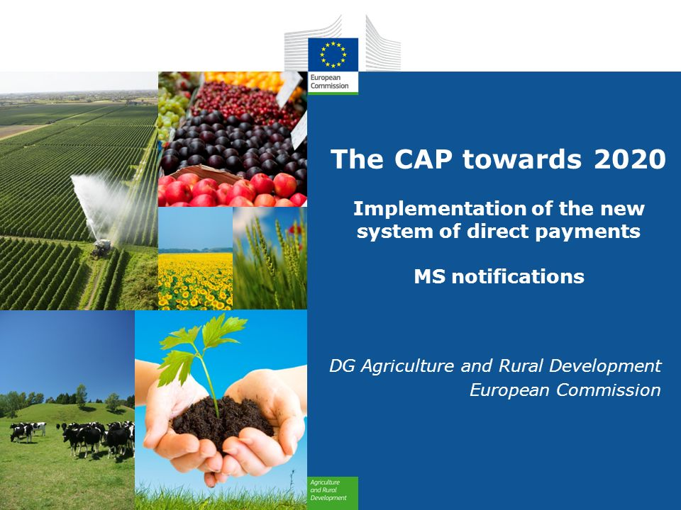 european agricultural policy The history of the common agricultural policy created in 1962, the common agricultural policy (cap) is one of the oldest polices of the european union (eu) major reforms shaped the cap in 1992, 2003 and 2013, adapting the policy to a changing world.