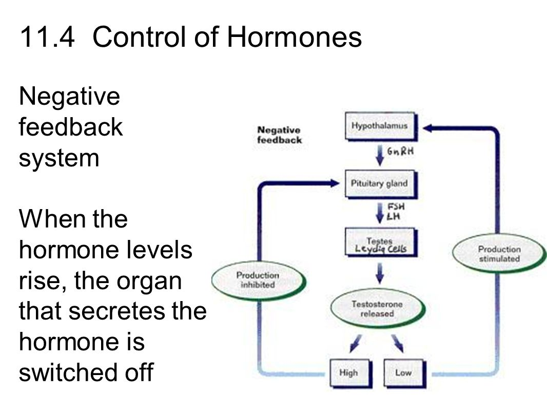 drugs that can affect hormone levels The sexual side effects of hormone therapy for prostate cancer can be some of the most difficult to deal with erectile dysfunction drugs such as sildenafil citrate (viagra®) do not usually work for men undergoing hormone therapy because these drugs do not affect loss of libido (sexual desire.