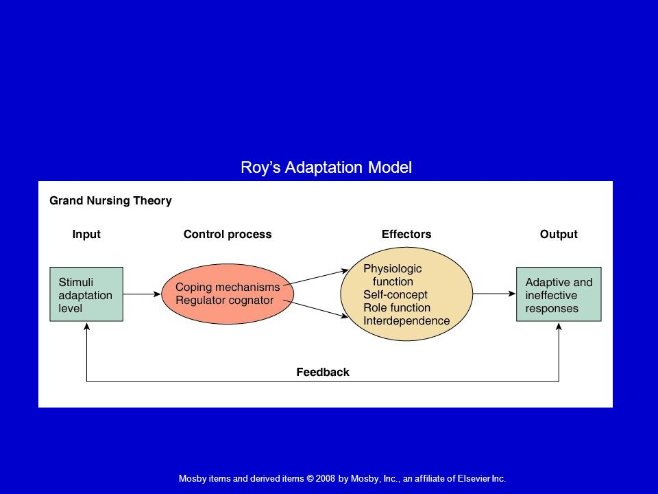 roy adaptation model in nursing practice The roy adaptation model has been used extensively to guide practice and to organize nursing education (mcewen & willis, 2011) in fact many nurses use the model as a framework to conceptualize and plan the care of patients one at a time, or use the model to create an intervention for a discrete clinical population (senesac, 2010.