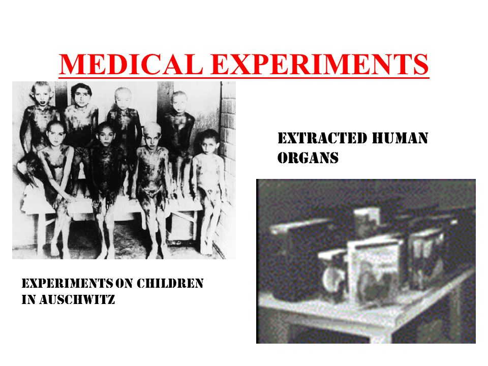 human medical experimentation Should animals be used for scientific or commercial testing read pros and cons in the debate.
