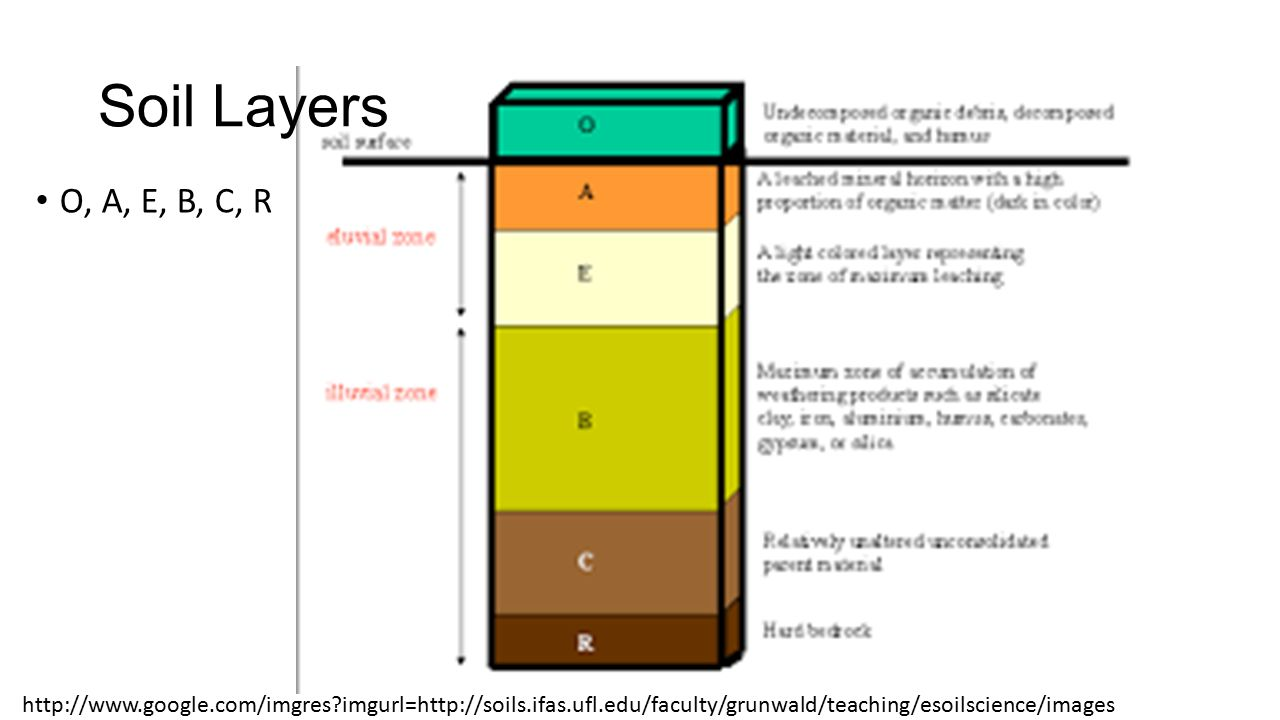 Chapter 10 weathering and soil formation ppt video for Why the soil forms layers in water
