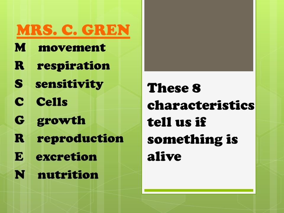 Excretion in animals and plants