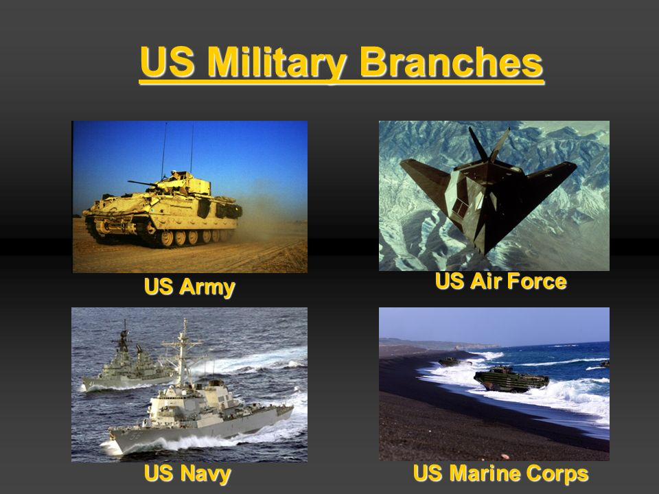 Civilian Control Over Military >> The US Army. The US Army Agenda US MILITARY BRANCHES Active Duty / USAR / NATIONAL GUARD RANK ...