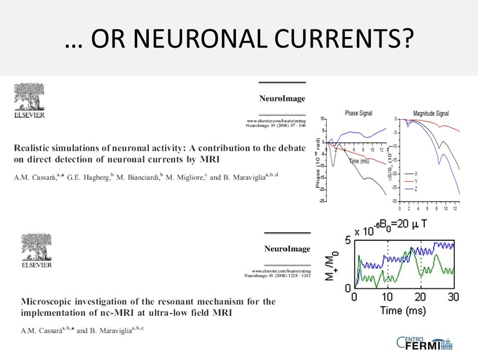 … OR NEURONAL CURRENTS
