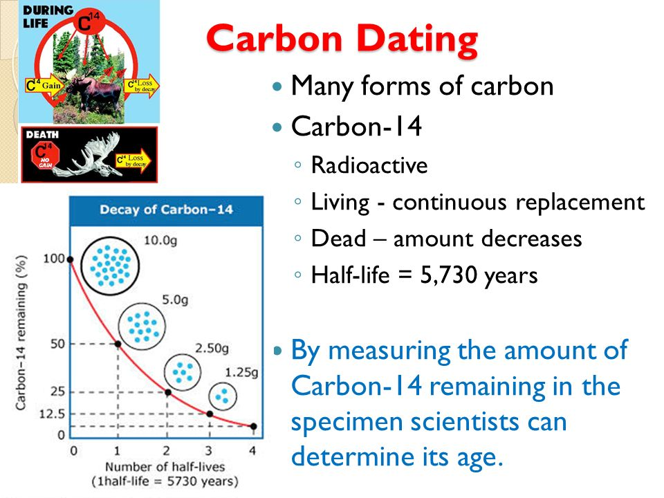 Carbon dating is used to determine the age of