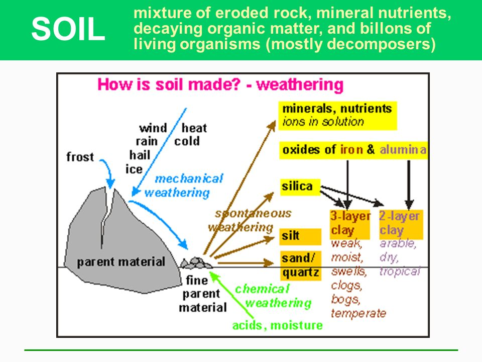Soil ppt video online download for What are soil minerals