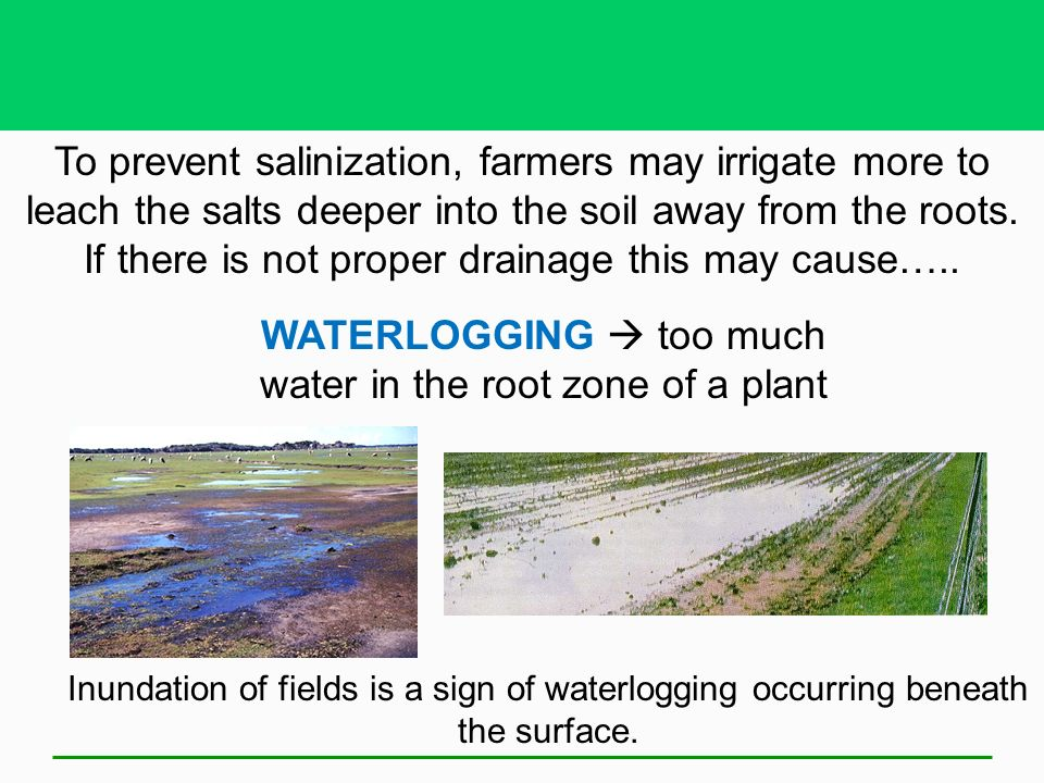Soil ppt video online download for Soil sentence