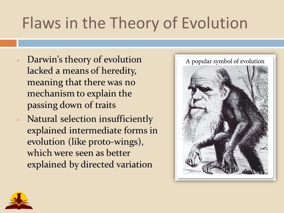 an introduction to evolution and the debate regarding the evolution theory 1 during the 1925 scopes trial, the defense's main argument was that a scopes was begin discriminated against b scopes had done nothing illegal c evolution was the latest scientific fad d evolution was a scientific fact 2 an immediate effect of the scopes trial on american society was that a the trial ended the debate over teaching evolution.