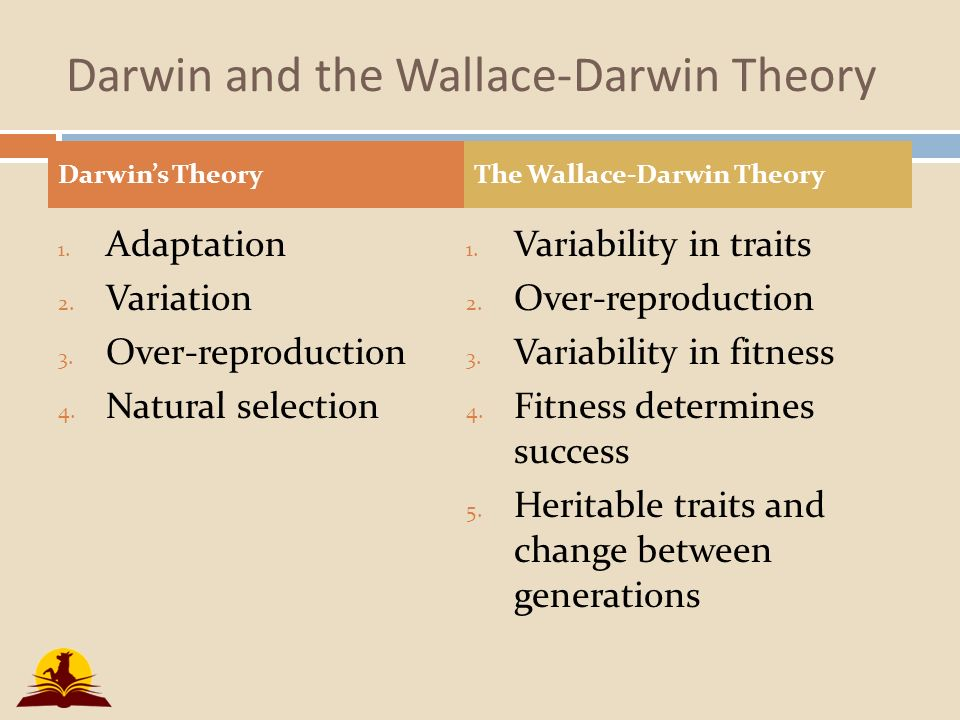 the influence of thomas malthus and charles lyell on charles darwins theory on natural selection It's also necessary to place darwin's development of the theory of evolution into  its  out in the principles of geology, a book that had a tremendous influence  on darwin  charles darwin and the theory of evolution by natural selection  it  into the concepts developed by other thinkers such as lyell, lamarck and  malthus.