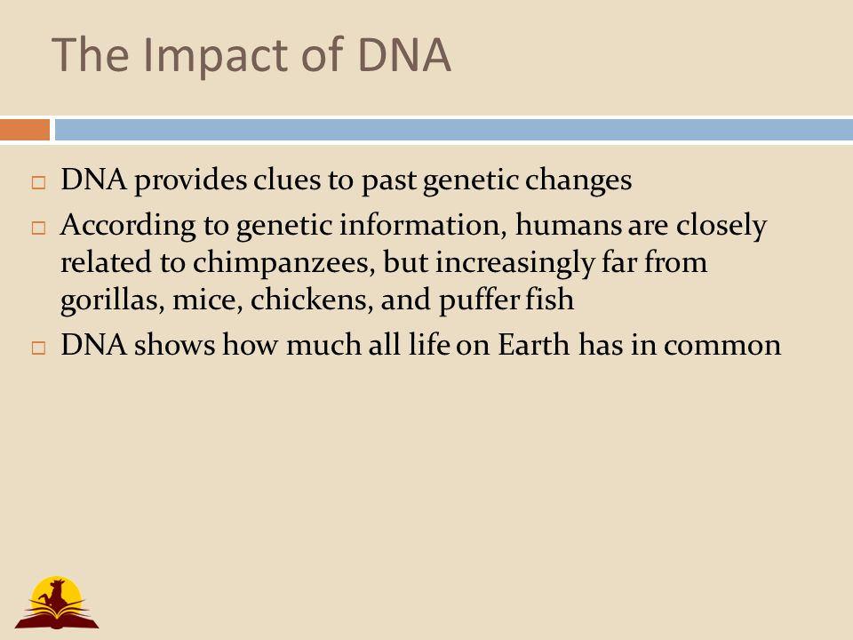 the impact of genetic engineering on everyday life We know genetic engineering is riddled with unpredictable effects, so we  been  required and most consumers use this information every day.